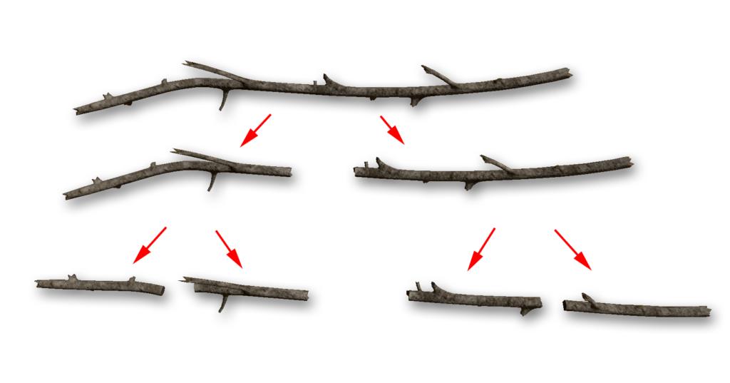 長い枝は4分割できます